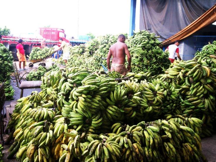Mercado de bananas en Manaos