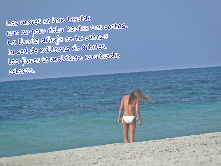 playa 9